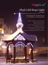 Flash Led rope Light-36-4